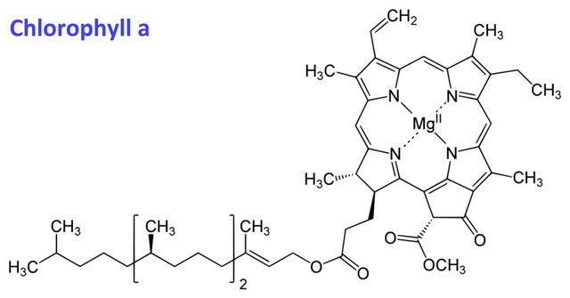 Examples Of Compounds